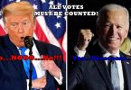 Joe Biden Calm Waiting For Results; Trump Whining Like A Baby